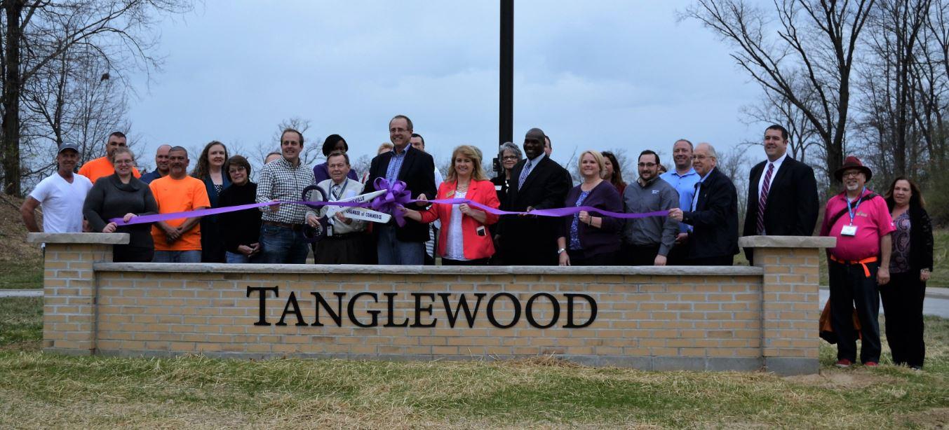 tanglewood1