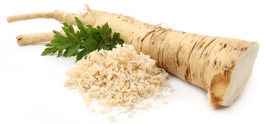 p02 horseradish